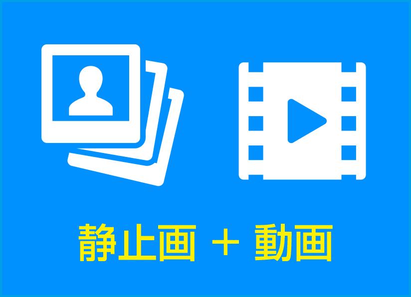 静止画 + 動画